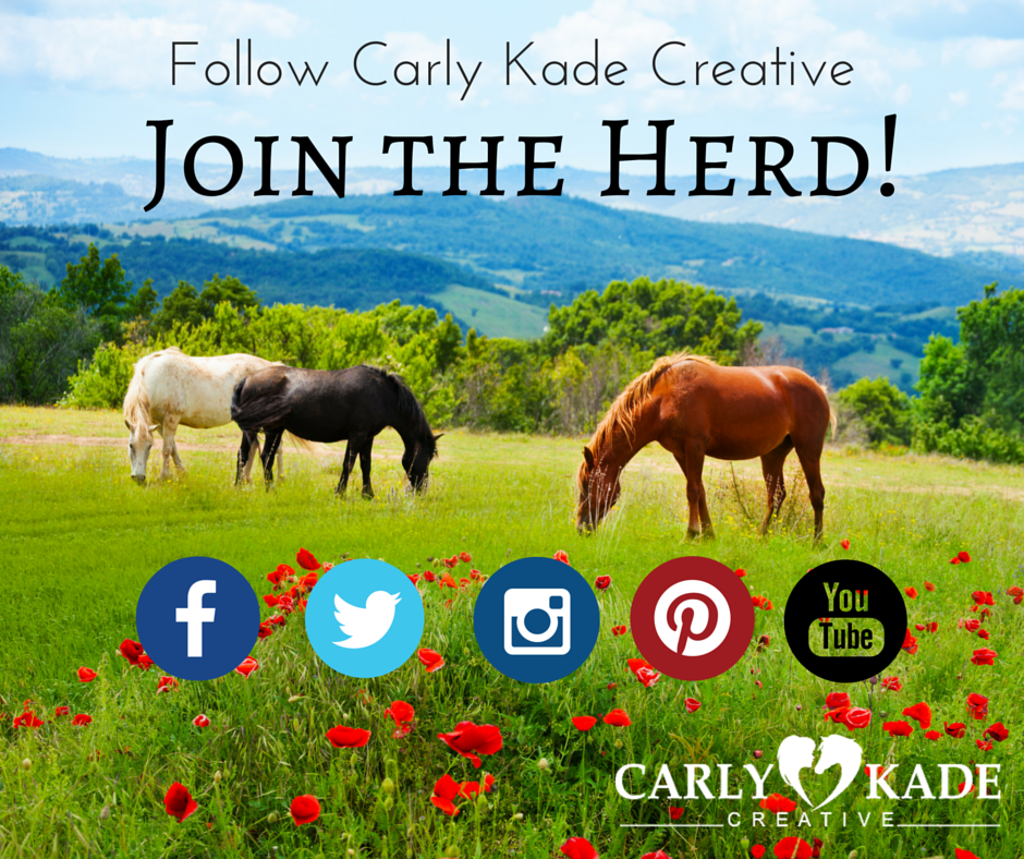 Carly Kade, Books by Carly Kade, Horse Book, Horse Book Series