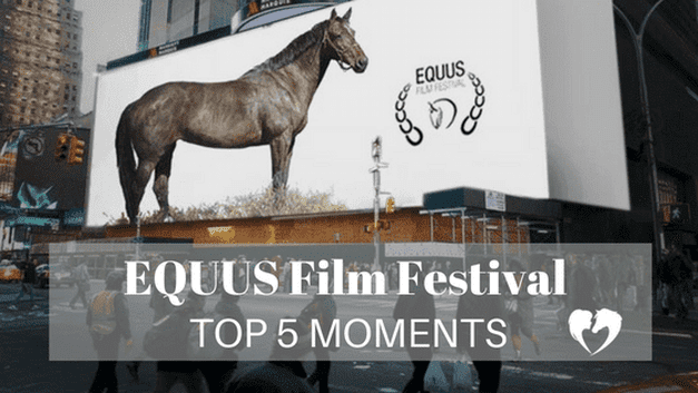 Author Carly Kade's Top 5 Moments at the EQUUS Film Festival