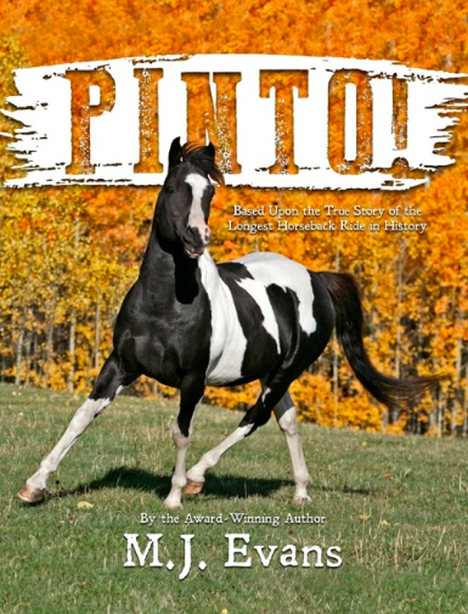 Pinto by M.J. Evans