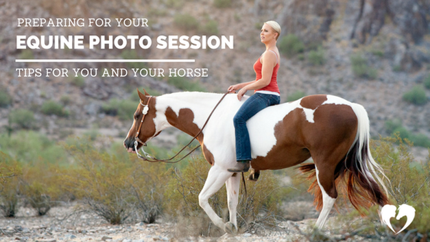 Equestrian Photography Tips