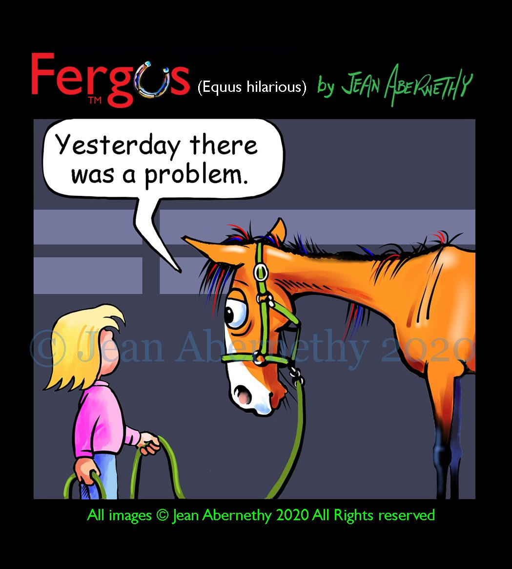 Fergus the Horse by Jean Abernethy