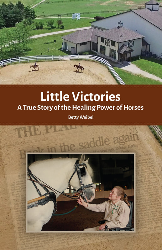 Little Victories by Betty Weibel