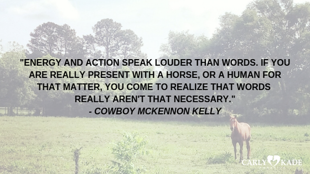 Cowboy Quotes from the In the Reins Horse Book Series by Carly Kade