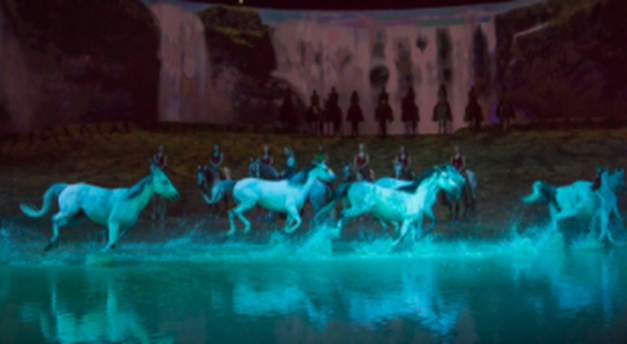 The horses of Odysseo