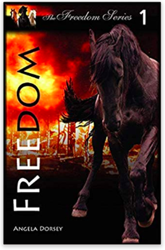 Freedom - A Horse Book by Angela Dorsey