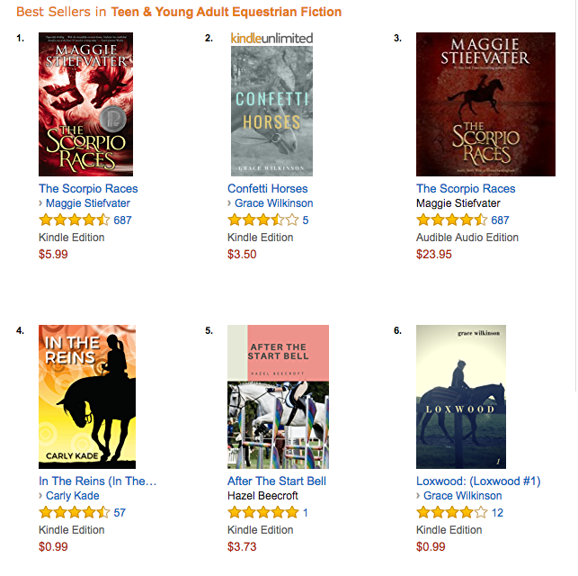In the Reins is an Amazon Equestrian Fiction Best Seller