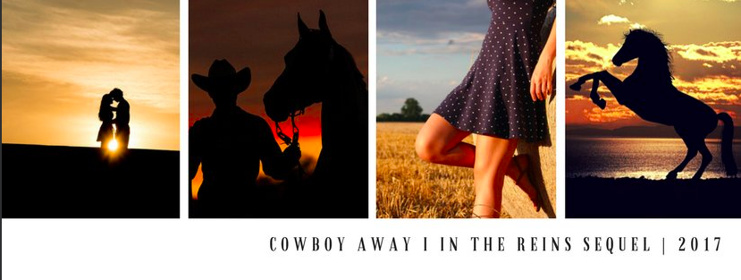 Cowboy Away is the second book in the In the Reins horse book series
